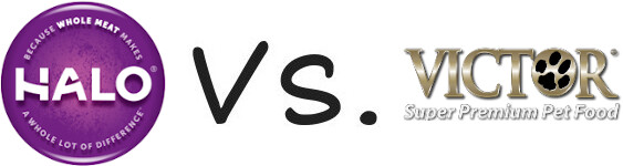 Halo vs Victor