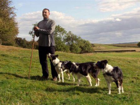 Dog Training Interview Nij Vyas, Border Collie Photos, Sheepdog Trials