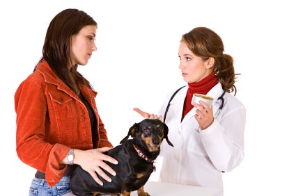 Canine Renal Failure (Kidney Disease): A Complete Guide