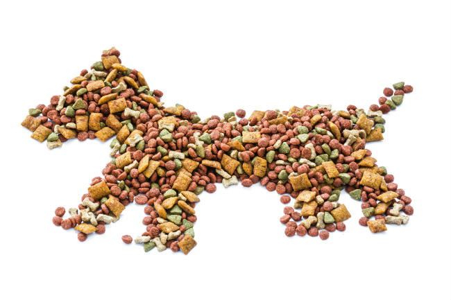 Grain Free Dog Food, Making Your Own Dog Food, Recipes for Homemade Dog Foods