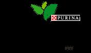Purina Beyond Brand Logo