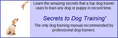 Dog Training Tips, Crate Training a Dog, Housebreaking Dogs