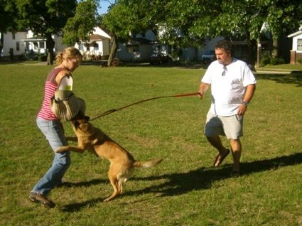 Dog Training Interview, Methods to Stop Dog Barking, Crate Training & More