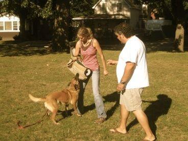 dog training interviews