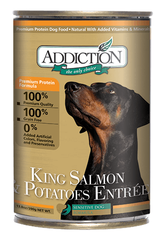 Addiction Canned Dog Food King Salmon & Potatoes Entree