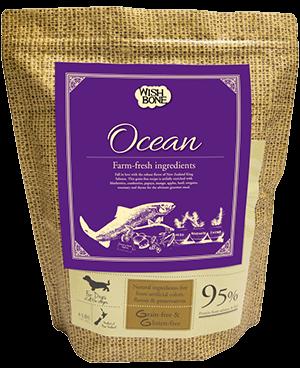 Addiction Dry Dog Food Wishbone Ocean