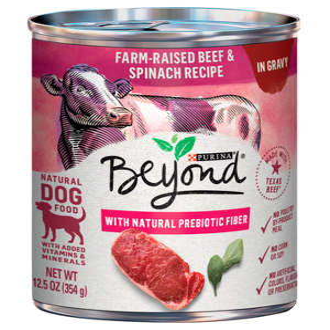 Purina Beyond In Gravy Grain Free Beef & Spinach Recipe