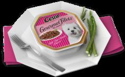 Cesar Gourmet Filets Rib-Eye Steak Flavor