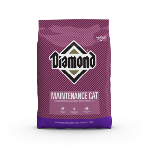 Diamond Dry Cat Food Maintenance Cat