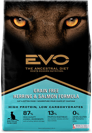 Evo Grain Free Dry Cat Food Herring Salmon Formula Review