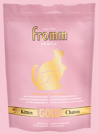 Fromm Gold Kitten
