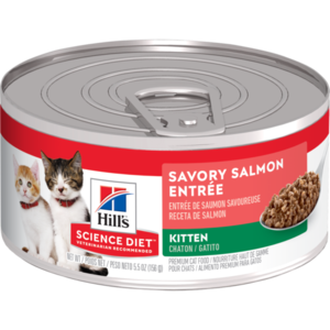 Hill's Science Diet Kitten Savory Salmon Entree