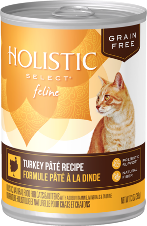 Holistic Select Grain Free Canned Turkey Pate Recipe