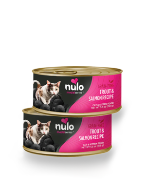Nulo MedalSeries Trout & Salmon Recipe (Canned Cat Food)