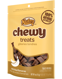 Nutro Chewy Treats With Real Bananas