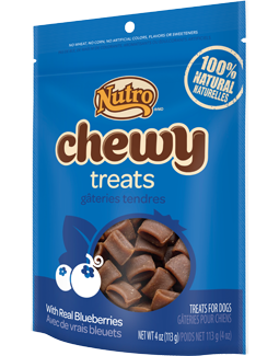 Nutro Chewy Treats With Real Blueberries