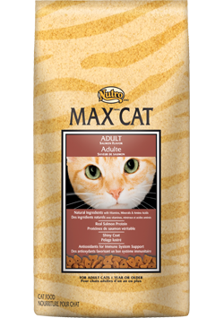 Nutro Max Salmon Flavor For Adult Cats