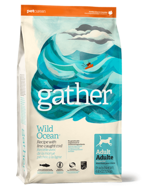 Petcurean Gather Wild Ocean Recipe For Adult Dogs