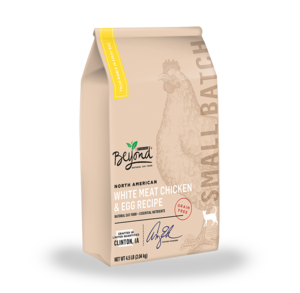 Purina Beyond Dry Cat Food Review