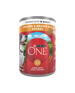Purina One SmartBlend Chicken & Brown Rice Entree (Tender Cuts In Gravy)