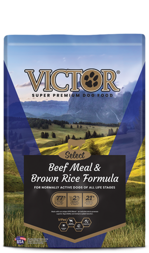 Victor Select Beef Meal & Brown Rice Formula | Review ...